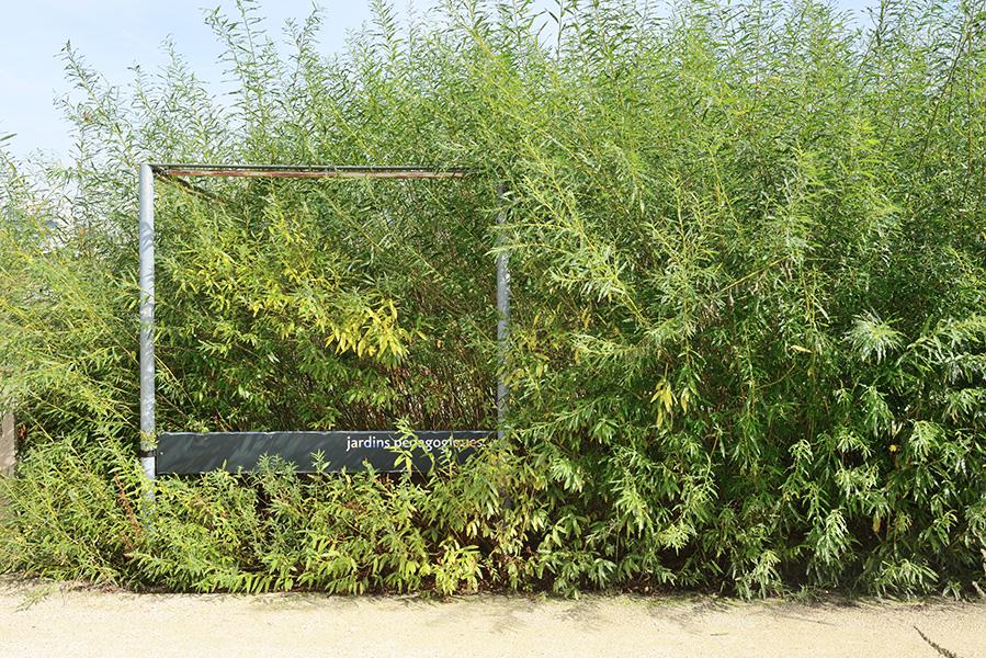michelenastasi.com_010_16_DSC_4268